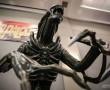 Hollywood Collectibles Alien Warrior 11 Statue – Sarà presentato al San Diego Comic Con 2015 (2)