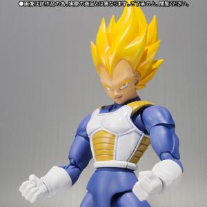 Dragon Ball Z Super Saiyan Vegeta (1)