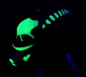 Alien Minimates Glowing Feature